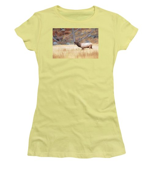 Women's T-Shirt (Junior Cut) featuring the photograph Bull Elk by Kelly Marquardt