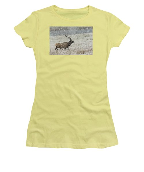 Bull Elk With Snow Women's T-Shirt (Athletic Fit)