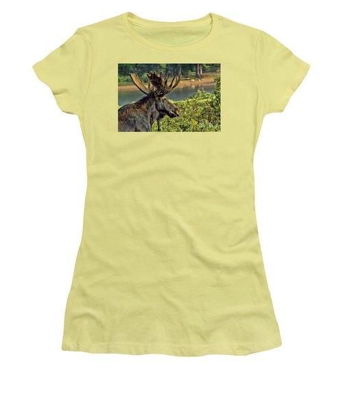 Bull Moose Women's T-Shirt (Junior Cut) by Steven Parker