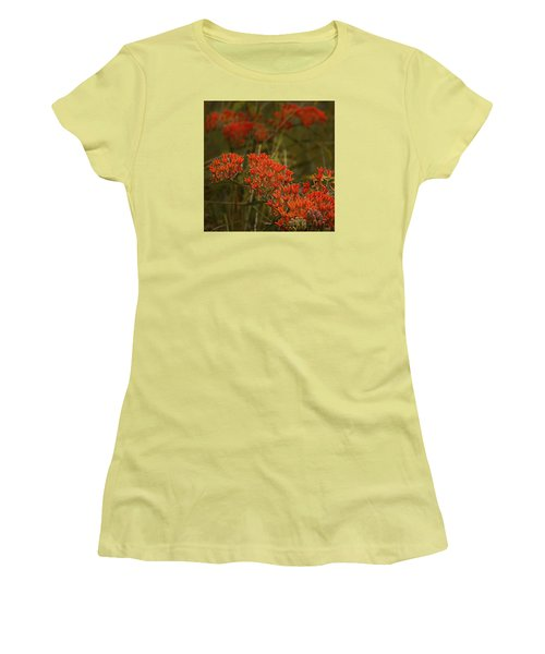 Butterfly Weed Asclepias Tuberosa Women's T-Shirt (Junior Cut) by Bellesouth Studio