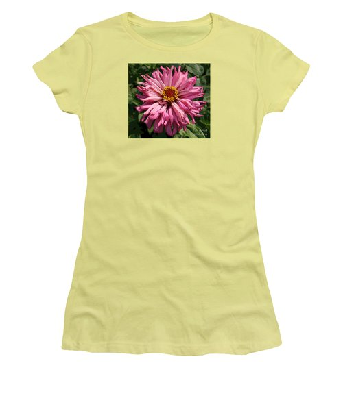 Women's T-Shirt (Junior Cut) featuring the photograph Cactus Petal Zinnia by Jeanette French