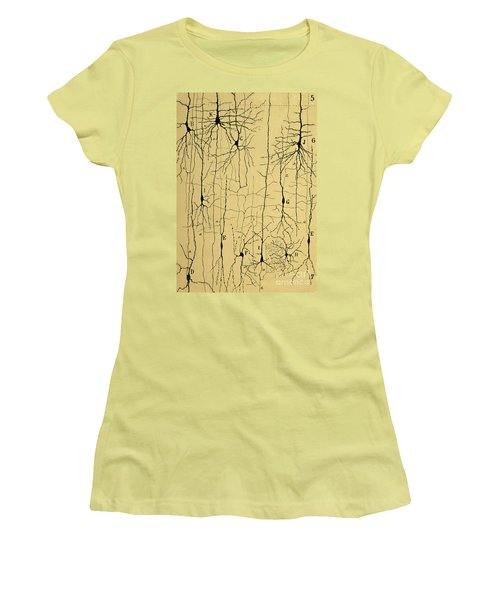 Cajal Drawing Of Microscopic Structure Of The Brain 1904 Women's T-Shirt (Athletic Fit)