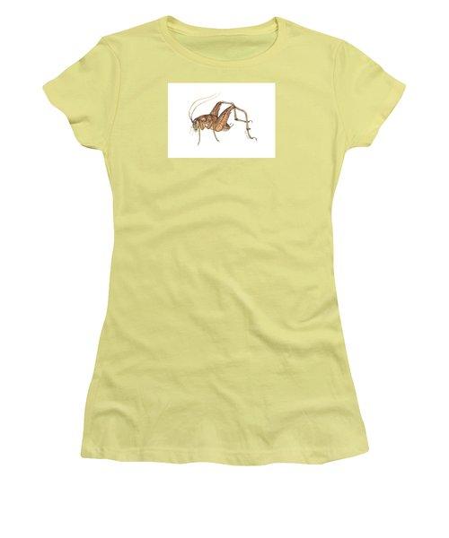 Camel Cricket Women's T-Shirt (Junior Cut) by Cindy Hitchcock