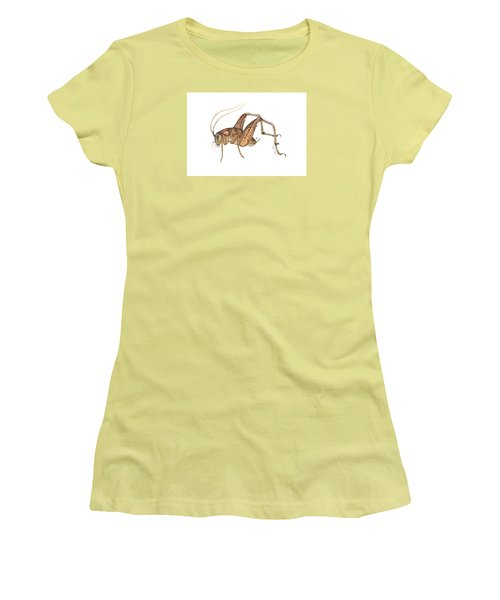 Camel Cricket Women's T-Shirt (Athletic Fit)