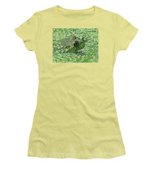 Camo Frog Women's T-Shirt (Junior Cut) by Ronda Ryan
