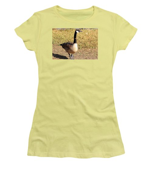 Women's T-Shirt (Junior Cut) featuring the photograph Canada Goose On A Stroll by Sheila Brown