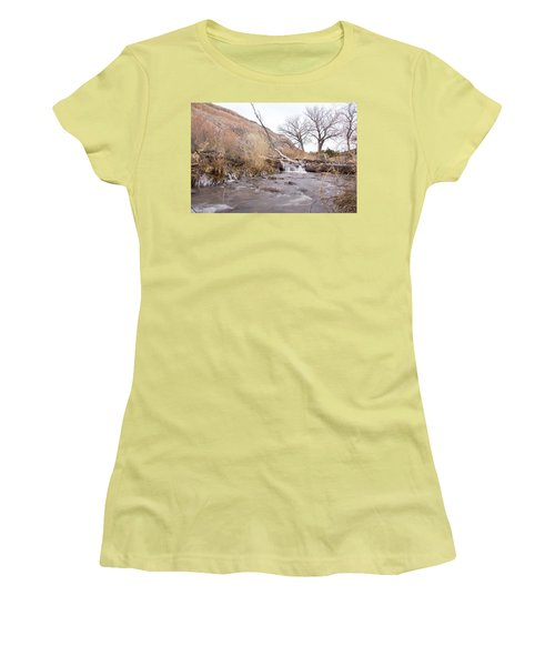 Canyon Stream Current Women's T-Shirt (Junior Cut) by Ricky Dean