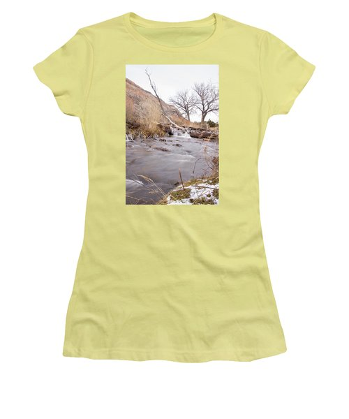 Canyon Stream Falls Women's T-Shirt (Athletic Fit)
