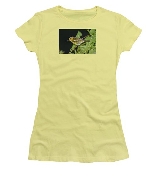 Cape May Warbler Women's T-Shirt (Junior Cut) by Alan Lenk
