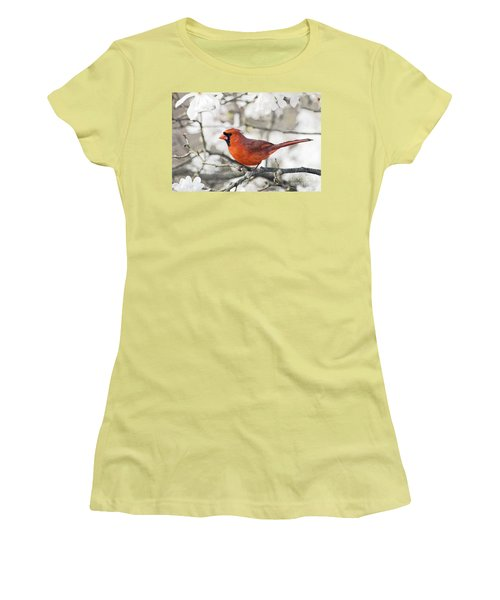 Women's T-Shirt (Junior Cut) featuring the photograph Cardinal Spring - D009909-a by Daniel Dempster