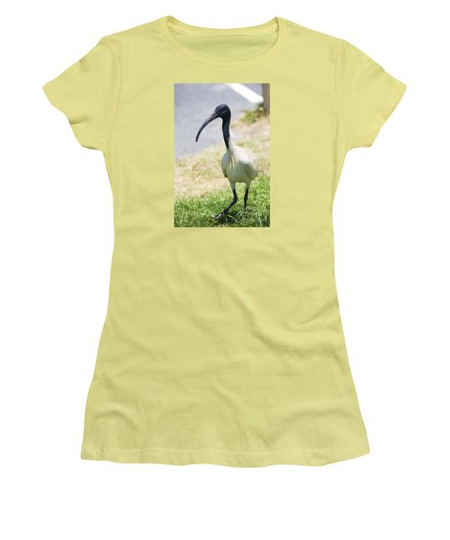 Carpark Ibis Women's T-Shirt (Athletic Fit)
