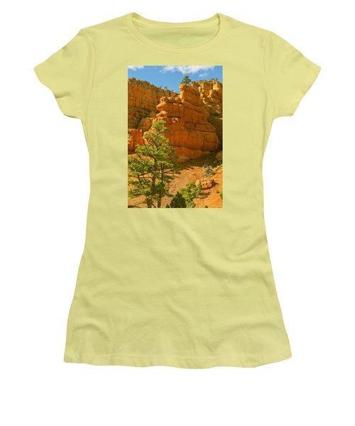 Casto Canyon Women's T-Shirt (Junior Cut) by Peter J Sucy