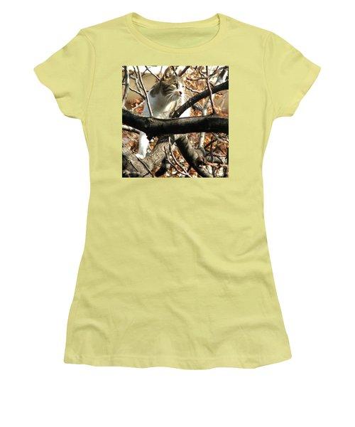 Cat Hunting Bird Women's T-Shirt (Junior Cut) by Judi Saunders