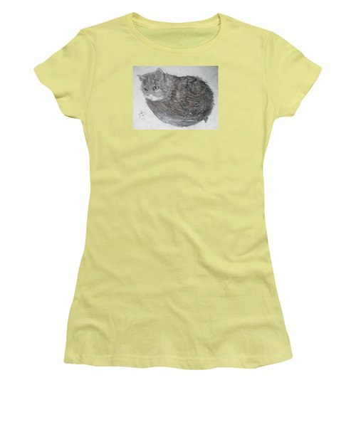Cat Named Shrimp Women's T-Shirt (Junior Cut) by AJ Brown