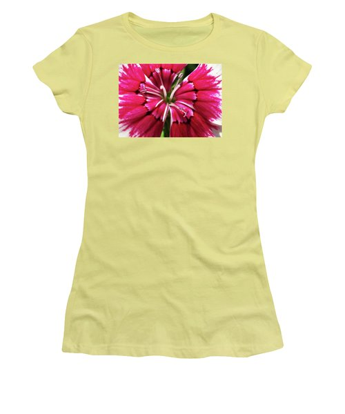 Center Of A Sweet William Women's T-Shirt (Junior Cut) by Mary Ellen Frazee