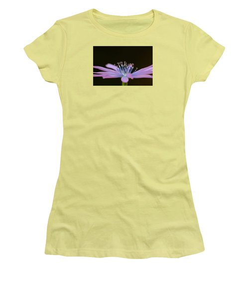 Chicory Women's T-Shirt (Junior Cut) by Richard Patmore