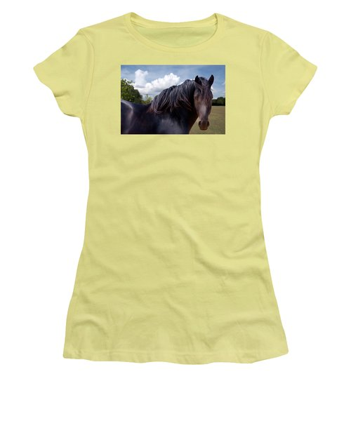 Chief - Windy Portrait Series 3 - Digitalart Women's T-Shirt (Athletic Fit)