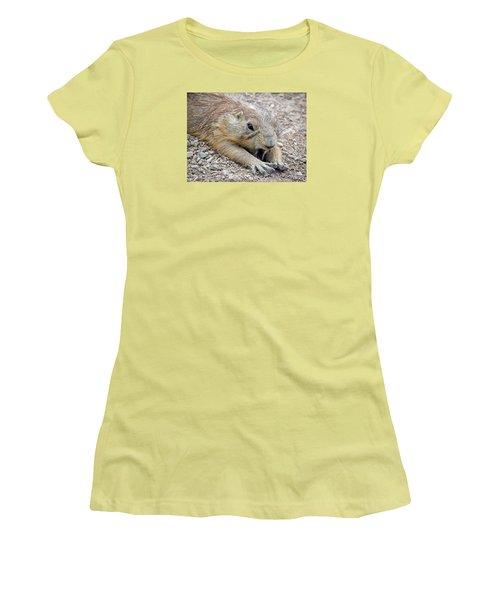 Chillin' Prairie Dog Women's T-Shirt (Junior Cut) by Elaine Malott