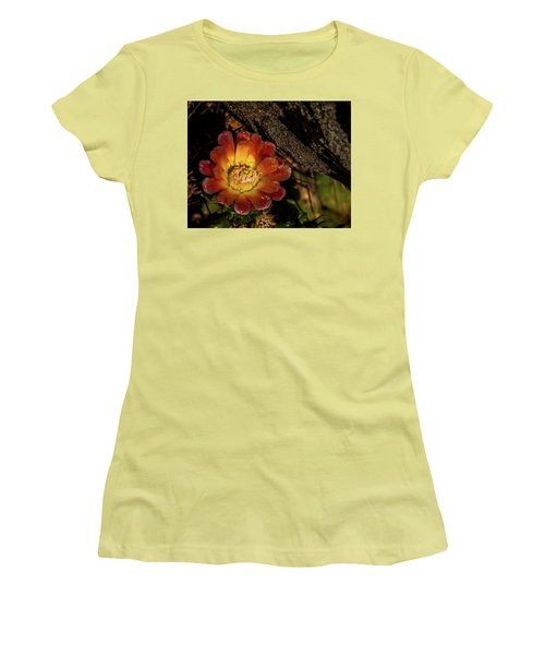 Cholla Women's T-Shirt (Junior Cut) by Martina Thompson