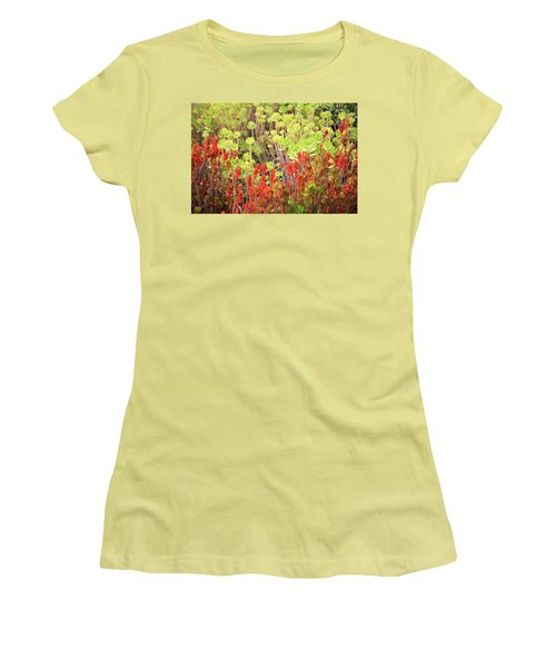 Christmas Cactii Women's T-Shirt (Athletic Fit)