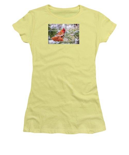 Women's T-Shirt (Junior Cut) featuring the photograph Christmas Cardinal by Brian Tarr
