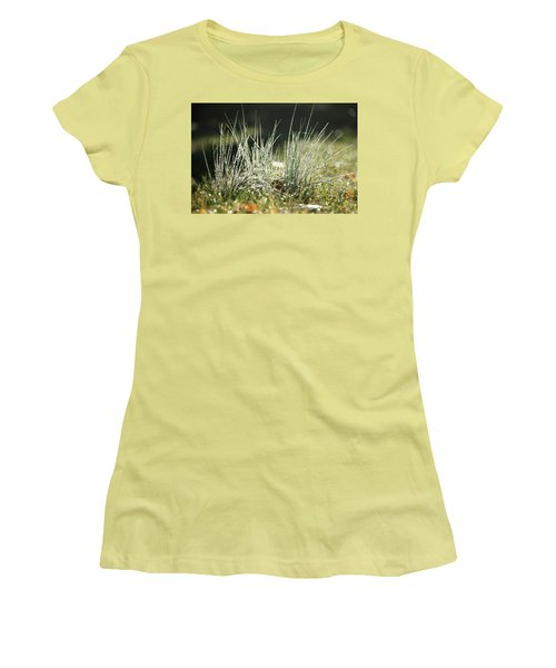 Close-up Of Dew On Grass, In A Sunny, Humid Autumn Morning Women's T-Shirt (Athletic Fit)
