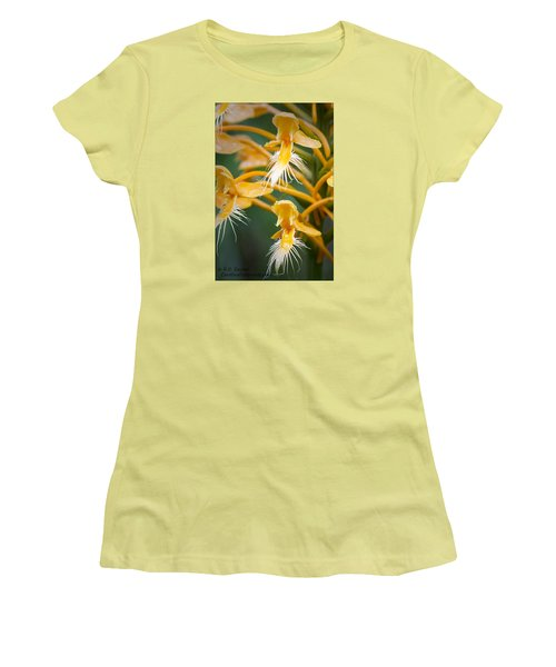 Women's T-Shirt (Junior Cut) featuring the photograph Close-up Of Yellow Fringed Orchid by Bob Decker