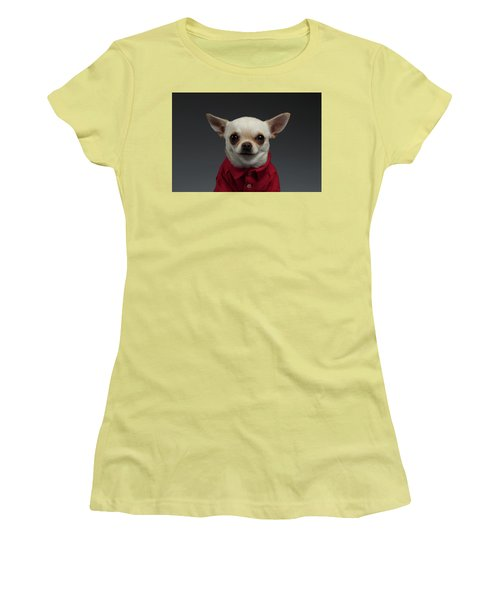 Closeup Portrait Chihuahua Dog In Stylish Clothes. Gray Background Women's T-Shirt (Athletic Fit)