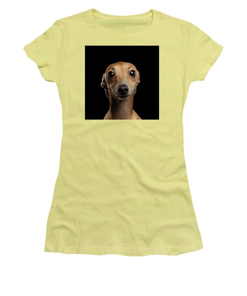 Closeup Portrait Italian Greyhound Dog Looking In Camera Isolated Black Women's T-Shirt (Athletic Fit)