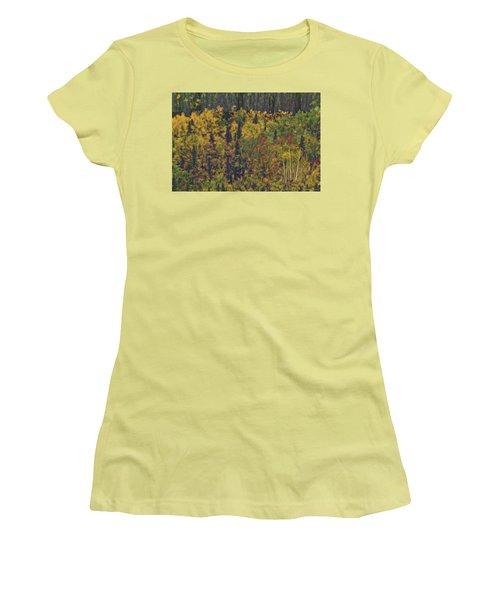 Colors Of Denali Women's T-Shirt (Athletic Fit)