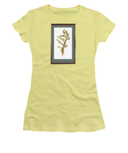 Compass Plant, Fall Women's T-Shirt (Junior Cut) by Catherine Twomey
