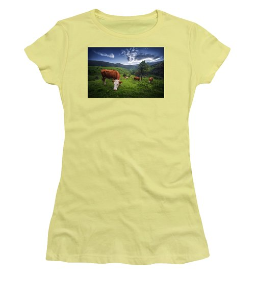 Cows Women's T-Shirt (Athletic Fit)