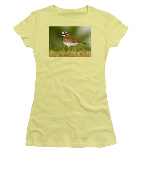 Curious Killdeer Women's T-Shirt (Junior Cut) by Myrna Bradshaw