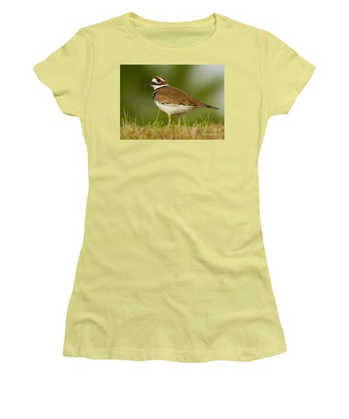 Curious Killdeer Women's T-Shirt (Athletic Fit)