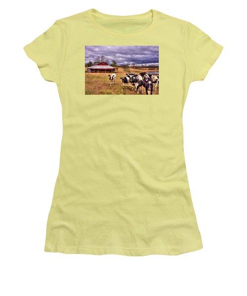 Dairy Heifer Groupies The Red Barn Art Women's T-Shirt (Junior Cut) by Reid Callaway