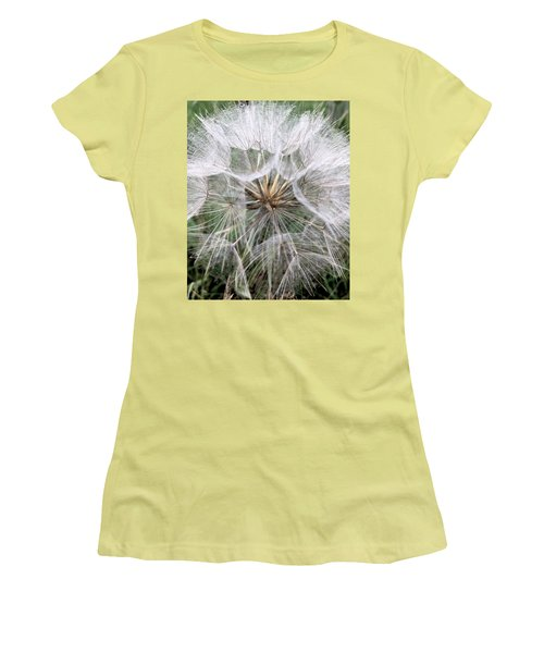 Dandelion Seed Head  Women's T-Shirt (Athletic Fit)