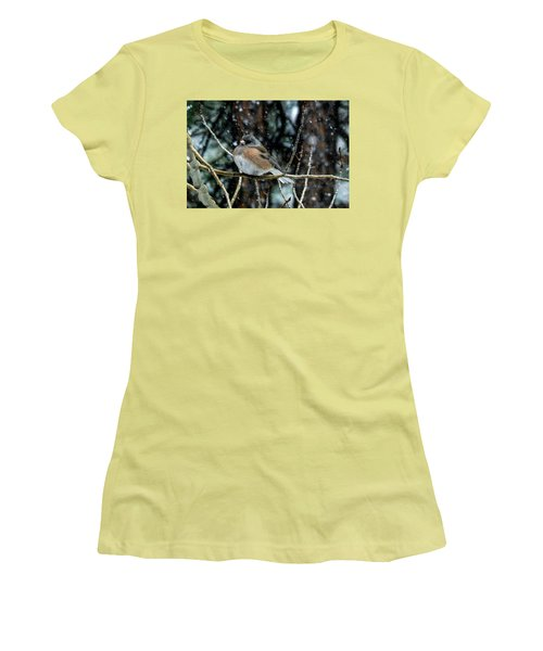 Dark-eyed Junco During A Snowfall Women's T-Shirt (Athletic Fit)