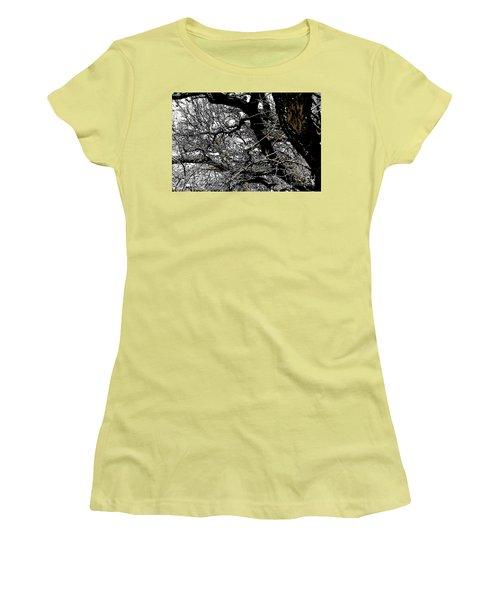 Dark Forest Women's T-Shirt (Junior Cut) by Renie Rutten