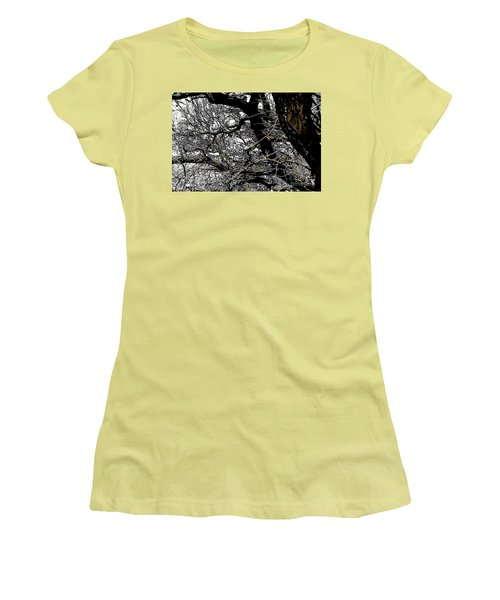 Dark Forest Women's T-Shirt (Athletic Fit)