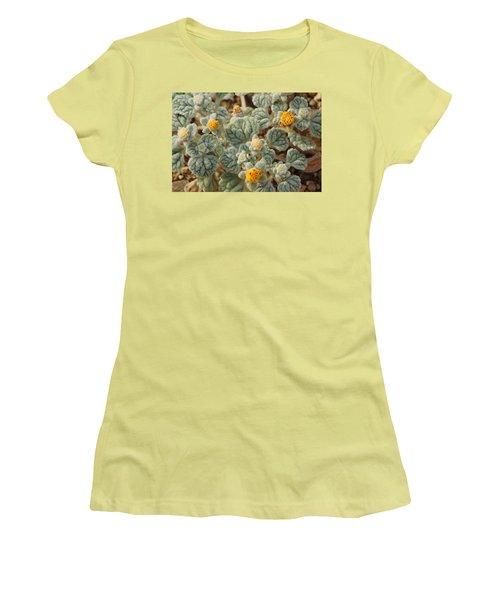 Women's T-Shirt (Junior Cut) featuring the photograph Death Valley Superbloom 302 by Daniel Woodrum
