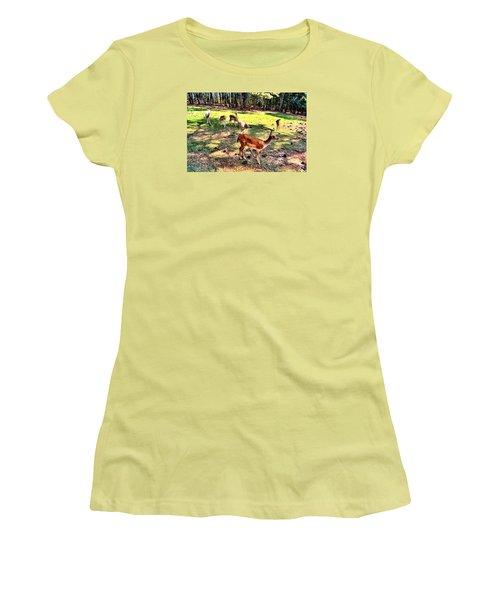 Deerfield Women's T-Shirt (Junior Cut) by James Potts
