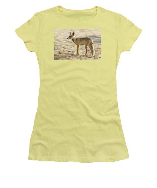 desert Fox 02 Women's T-Shirt (Junior Cut) by Arik Baltinester