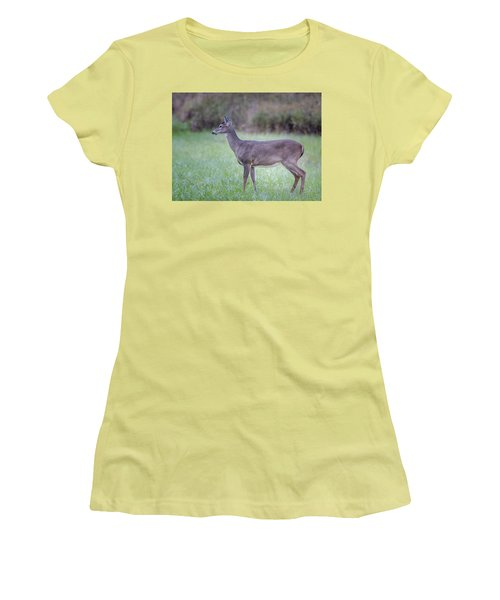 Women's T-Shirt (Junior Cut) featuring the photograph Doe In Cades Cove by Tyson Smith