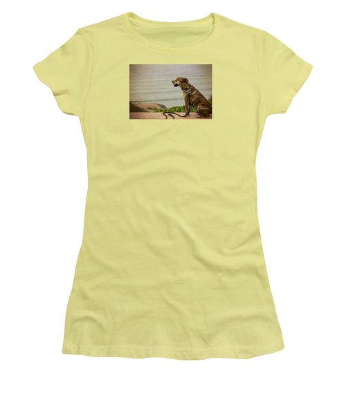 Dog On The Beach Women's T-Shirt (Athletic Fit)