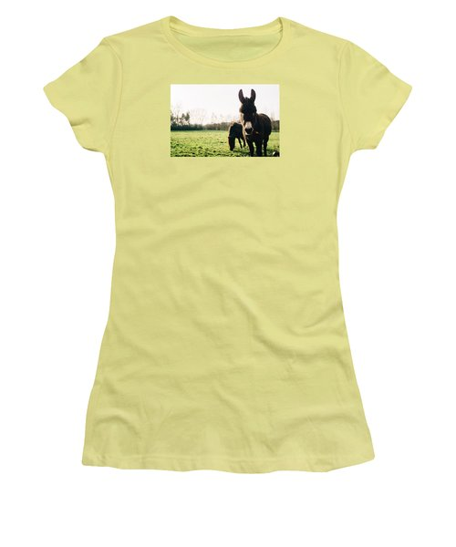 Donkey And Pony Women's T-Shirt (Junior Cut) by Pati Photography