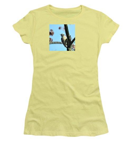 Downy Woodpecker Women's T-Shirt (Junior Cut) by Kathy Eickenberg