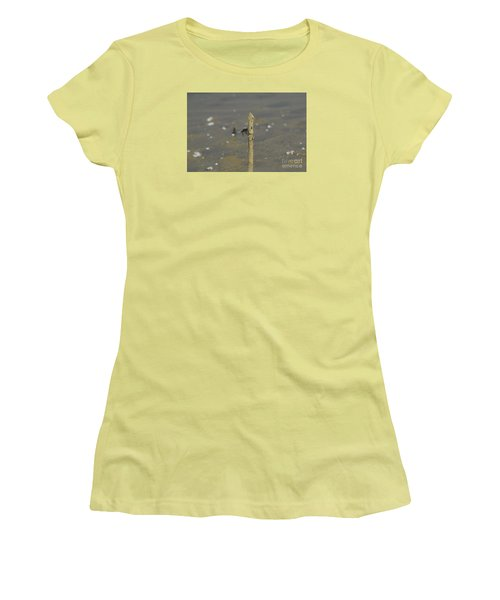 Dragonfly On Old Wood Women's T-Shirt (Athletic Fit)