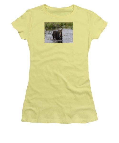 Drooling Cow Moose Women's T-Shirt (Junior Cut) by Elizabeth Eldridge