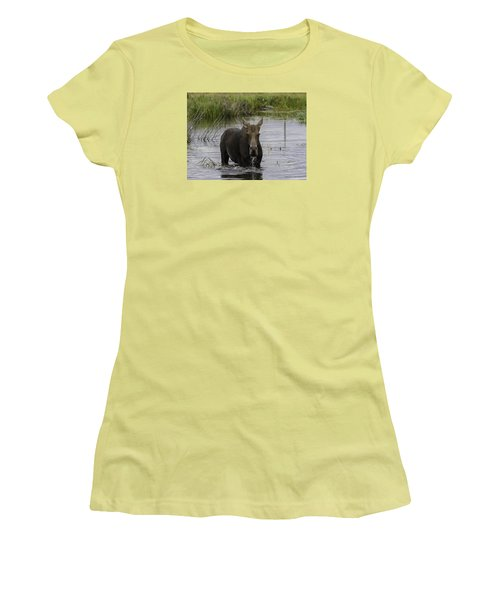 Drooling Cow Moose Women's T-Shirt (Athletic Fit)