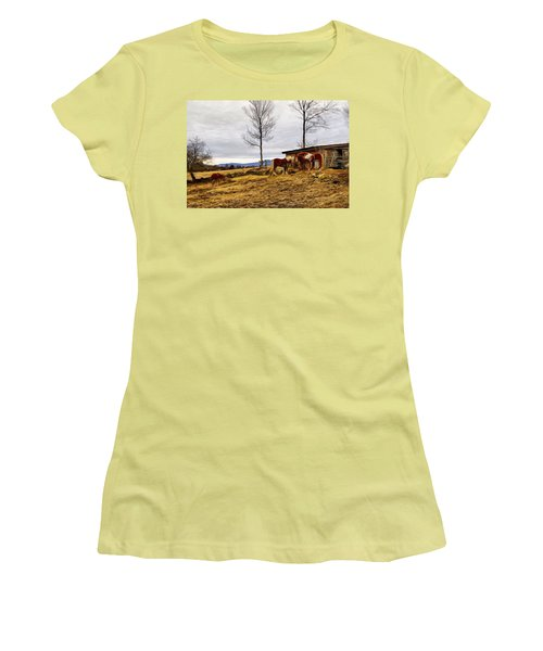 Dusk Feeding On The Farm Women's T-Shirt (Athletic Fit)